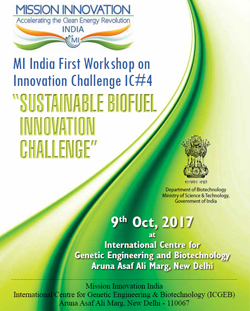 "Report on ""Sustainable Biofuels Innovation"" Challenge"